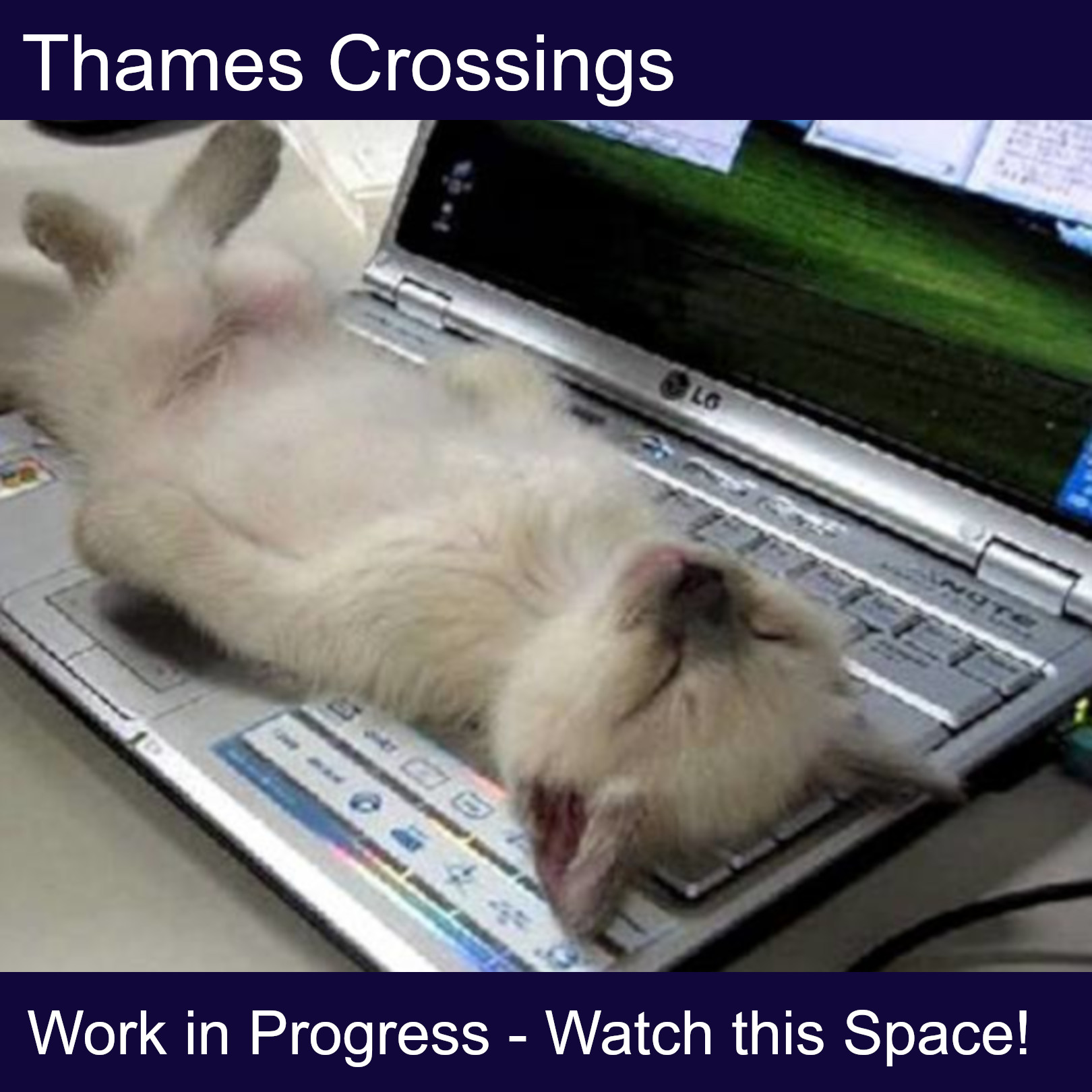 Thames Crossings